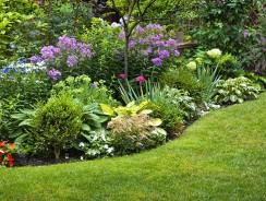 Comment entretenir les bordures de pelouse ?