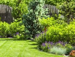 Entretenir son jardin : l'importance des finitions